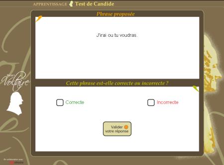 Projet voltaire - test de grammaire francaise